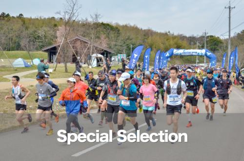 Special Selection 2019